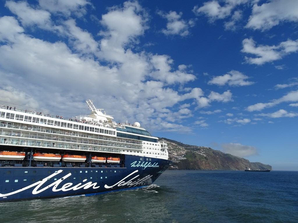 cruise industry Established in 1975, cruise lines international association (clia) is the world's largest cruise industry trade association, providing a unified voice and le.