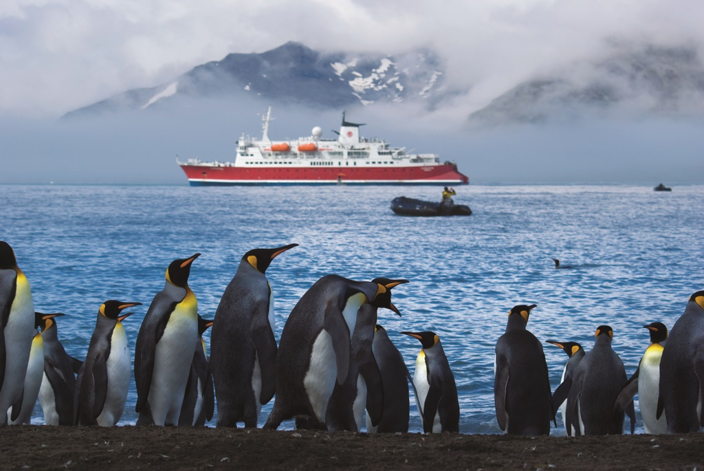 Antarctica Tourism Numbers Surge Cruise Industry News