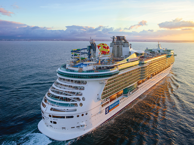 Royal Caribbean Sees 100 000 Sign Ups For Free Volunteer Cruises Cruise Industry News Cruise News