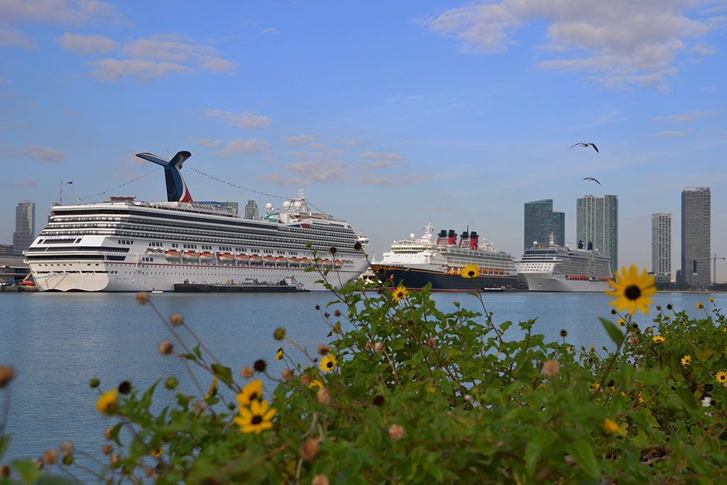 CDC Lightens Up On Cruise Face Mask and Shore Ex Rules for Vaccinated Guests