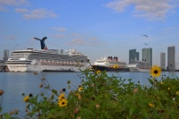 Ships in Miami (photo: Antonio Silva)