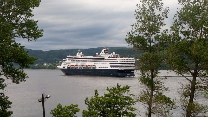 Veendam in Cornerbrook